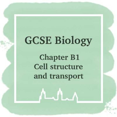 GSCE Biology | Chapter B1 | Cell Structure and Transport