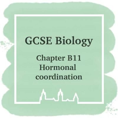 GSCE Biology | Chapter B11 | Hormonal Coordination