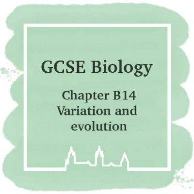 GSCE Biology | Chapter B14 | Variation and Evolution